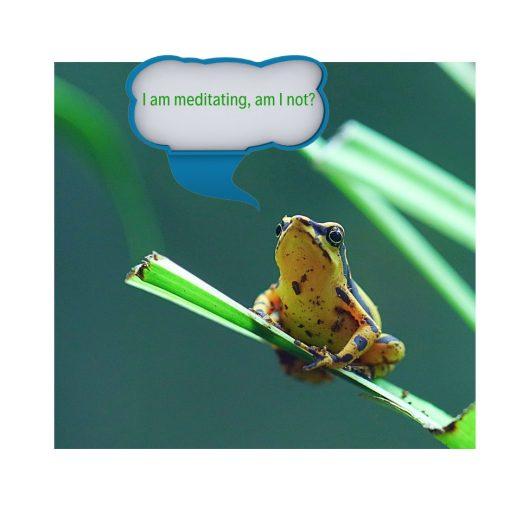 """003 Reflections, """"Meditating"""""""